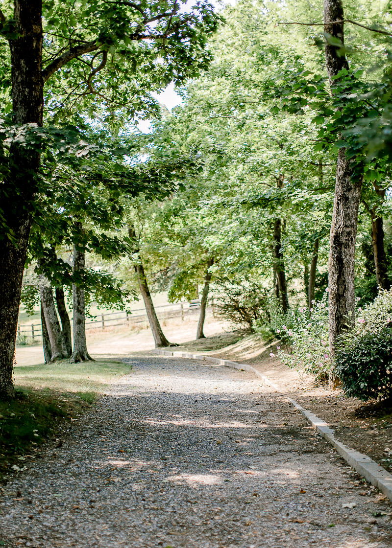 chemin bordés d'arbres au château des gaudras